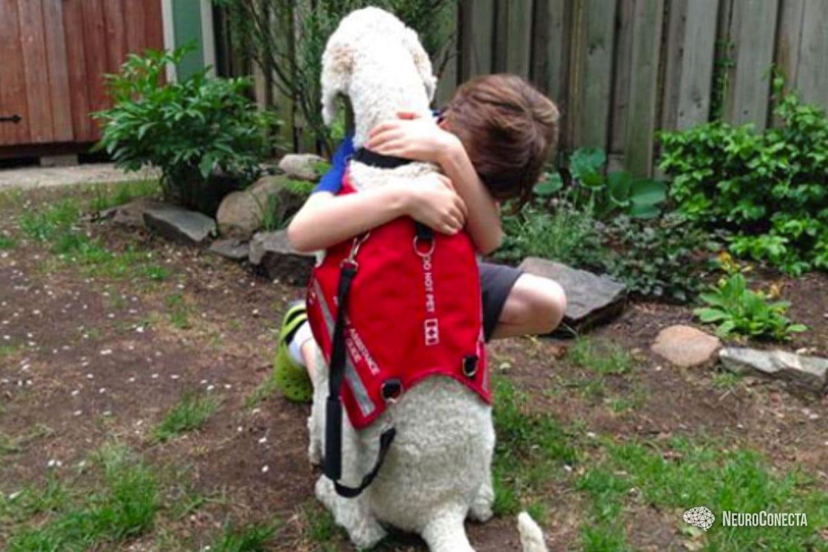 Cães de serviço para autistas