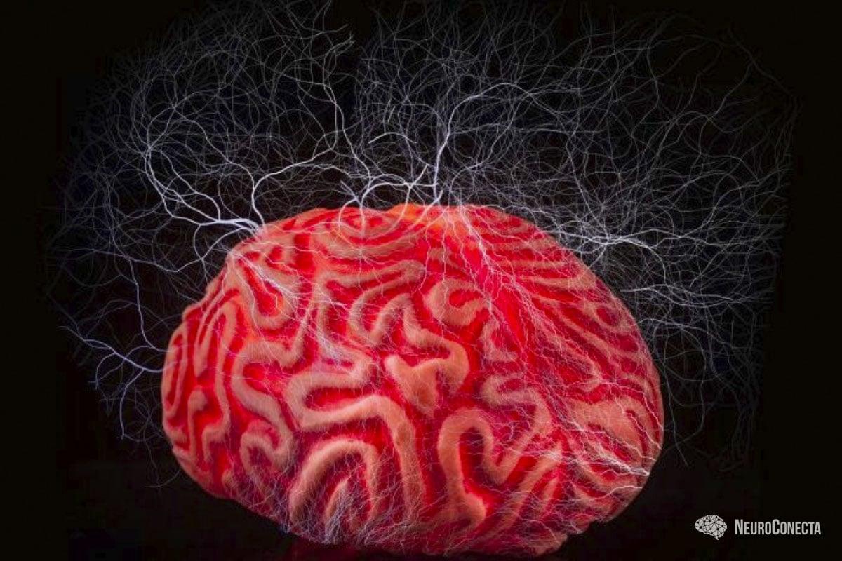 Epilepsia e Autismo: há relação?